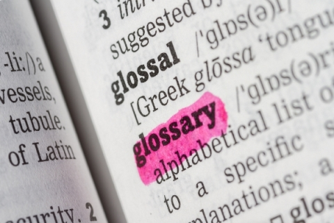 Glossary definition